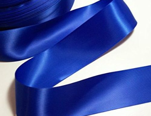 ROYAL BLUE RIBBONS as Little Lane, Killed by Gator, Is Laid to Rest