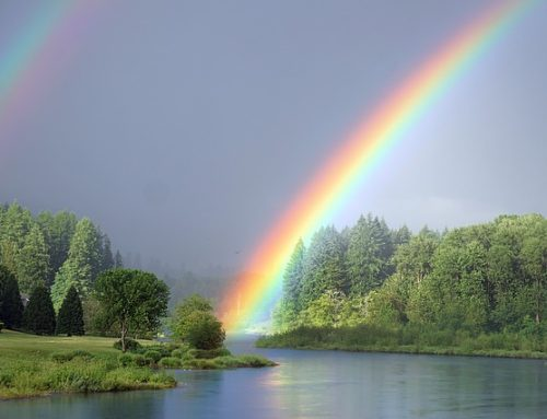 God, Noah, and the Flood:  Taking Back the Rainbow
